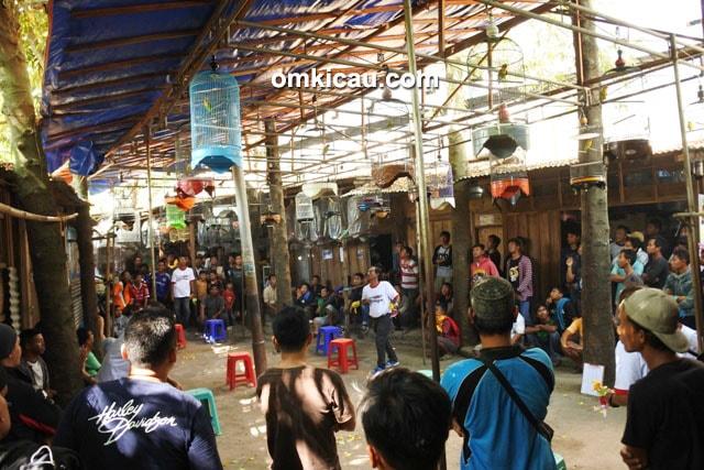 Pasar Burung Purwodadi
