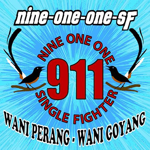 logo 911 SF