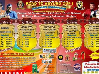 Road to Asyuro Cup