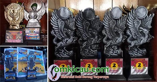 koleksi trofi lovebird Bom Bom