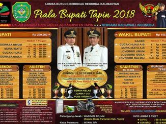 Piala Bupati Tapin
