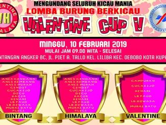 Valentine Cup V