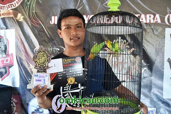 lovebird balibu Palapa
