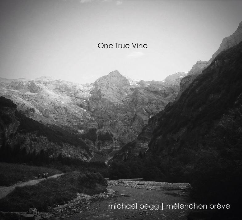 One True Vine sleeve