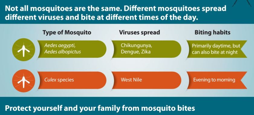 Tick and Mosquito Season