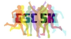 Tufts GSK 5K, Tufts University