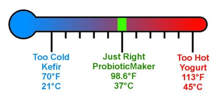 probiotic maker, probiotics, yogurt
