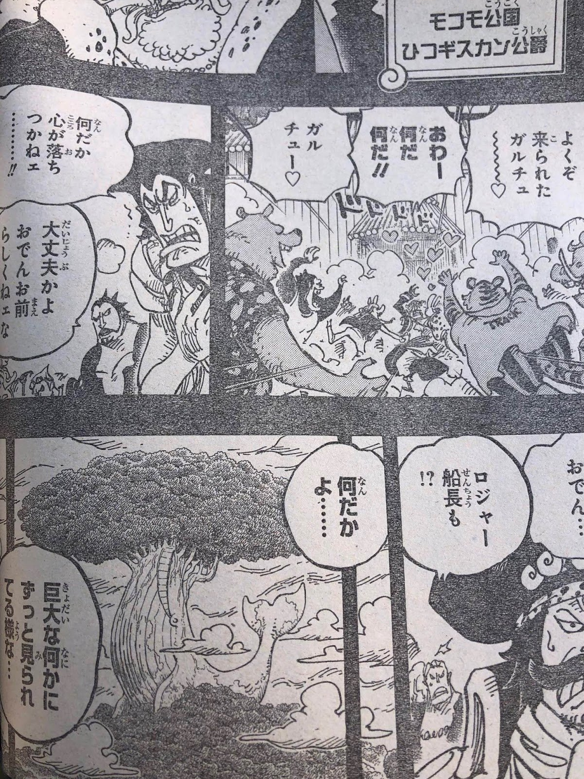 One Piece 967 Scan : piece, Piece, Chapter, Spoilers,, Release