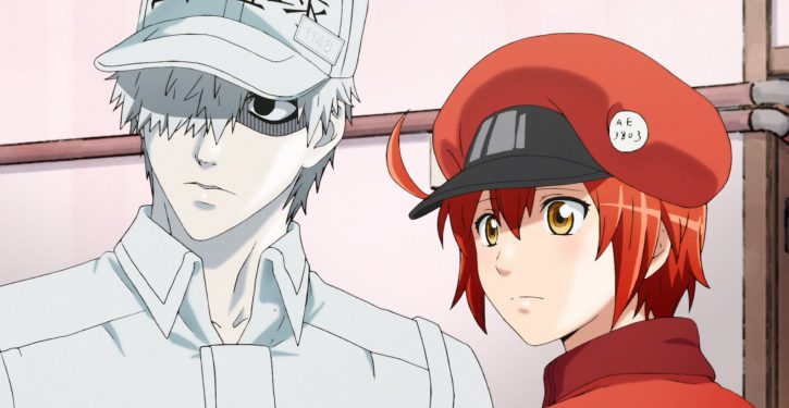 Cells at Work!! Season 2 Updates, Promotional Video, and Cast!!