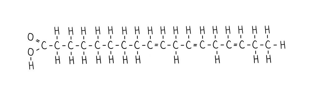 acide-alpha-linolenique-acide-gras-insaturé
