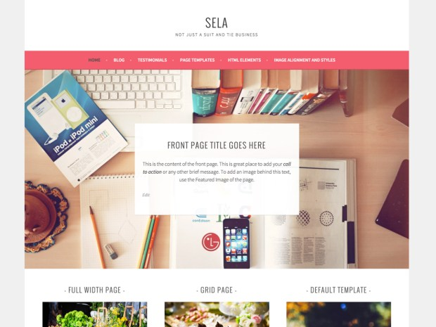 sela-theme-featured-image