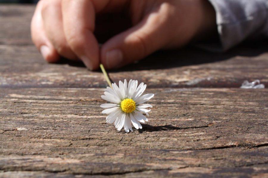 幸せ、努力の小さな積み重ねが、大きな幸せと成果になる