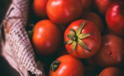 これからの時期こそおススメなトマトの食べ方