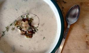 soup-mashrooms