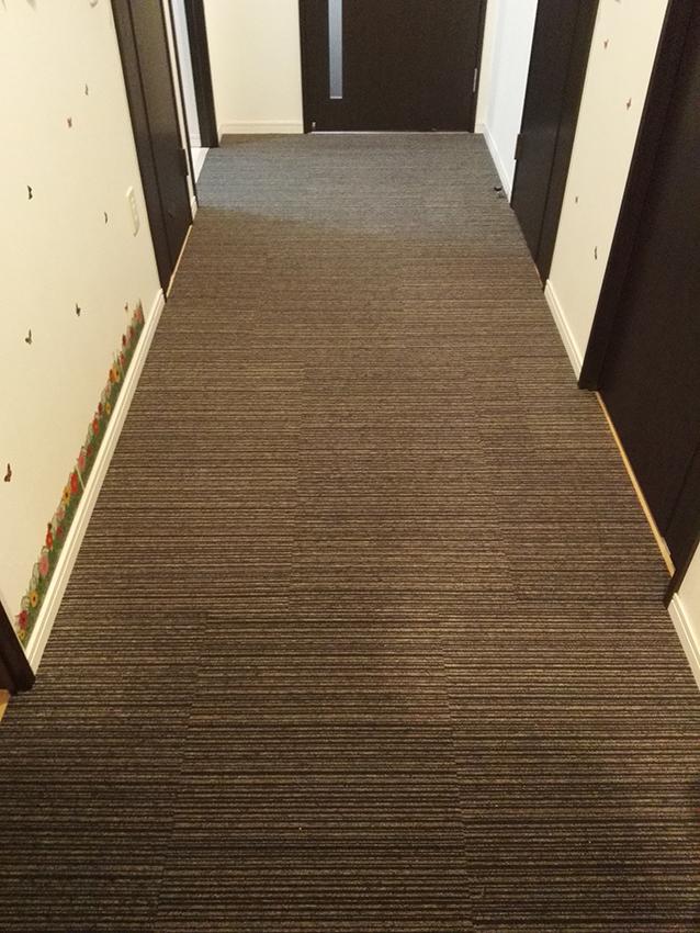 carpet08