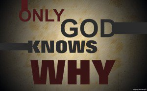 384623099-only_god_knows_why_by_joiecatipon-d337njh
