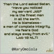 Job 1:8