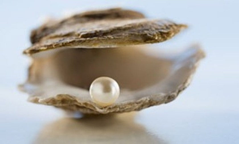 pearl-in-an-oyster