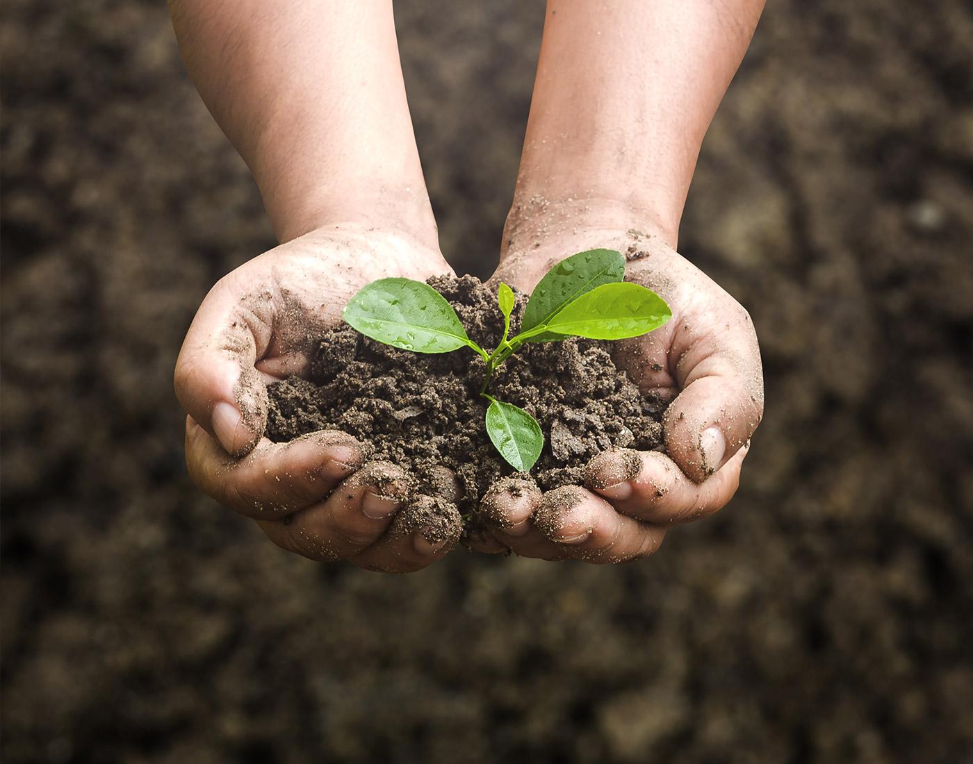 Environmental Awareness  OMS