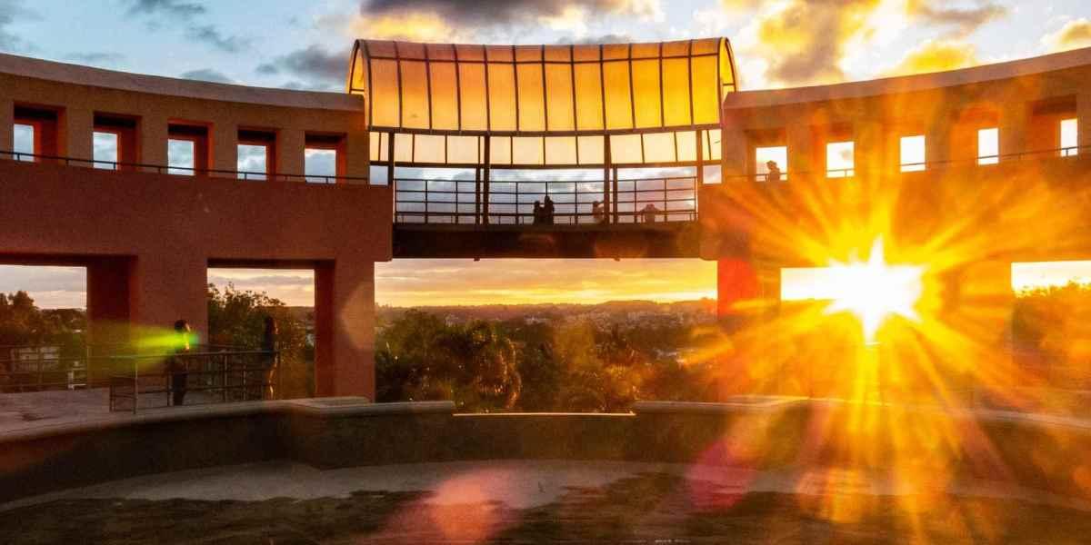 Energia solar em Curitiba: imagem de parque ensolarado em Curitiba