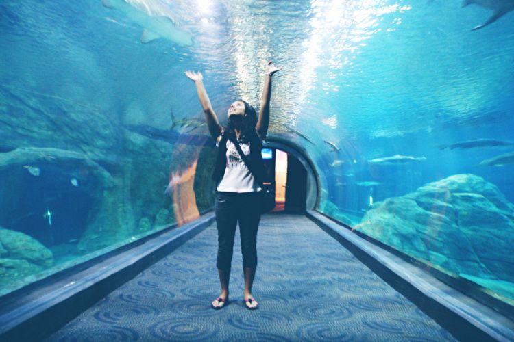 Adventure Aquarium, Philadelphia, www.omtripsblog.com