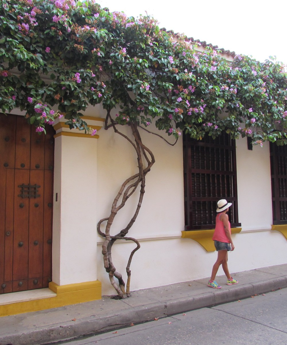 Quanto custa uma viagem para Cartagena