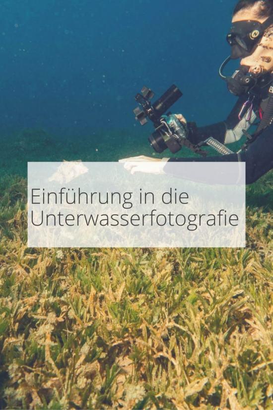 Unterwasserfotografie für Anfänger