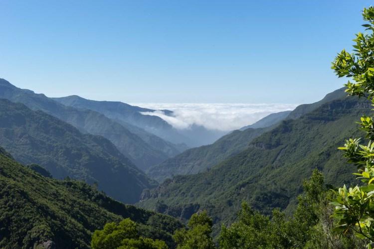 aufsteigender Nebel in Rabacal