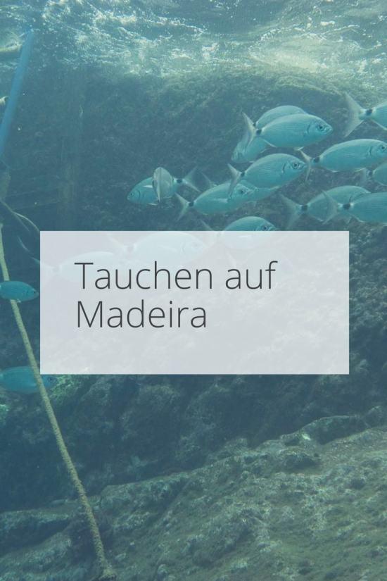 Tauchen auf Madeira