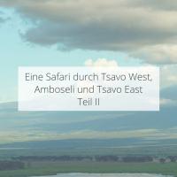 Eine Safari durch Tsavo West, Amboseli und Tsavo East Teil II