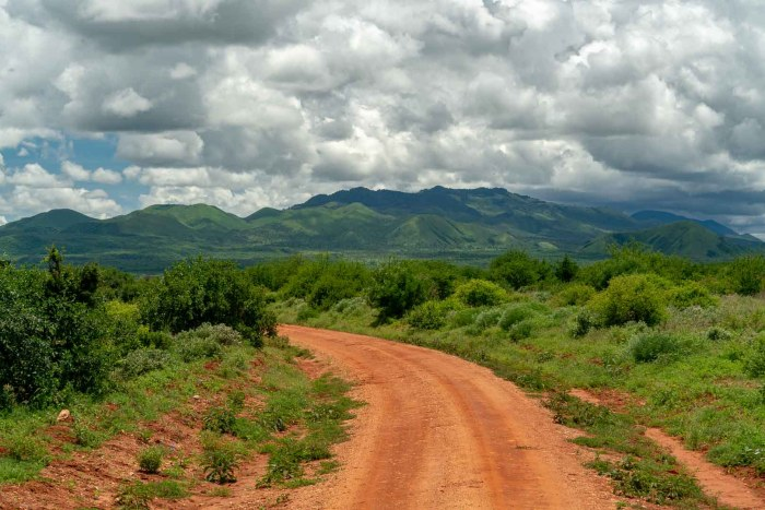 Landschaft Tsavo West