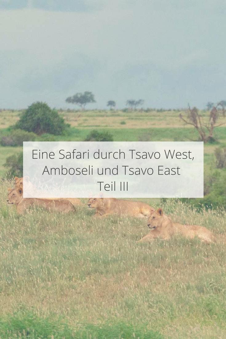 Safari durch in Nationalpark Tsavo East in Kenia