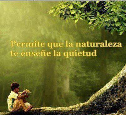 naturaleza2