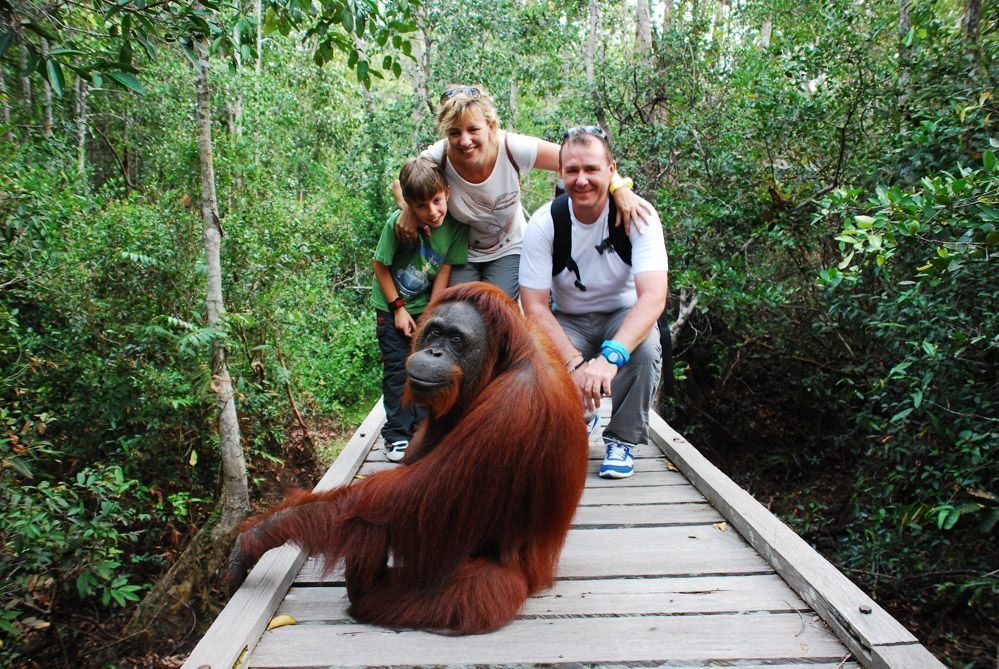 con-los-orangutanes-de-Borneo-om-viajes-y-relatos