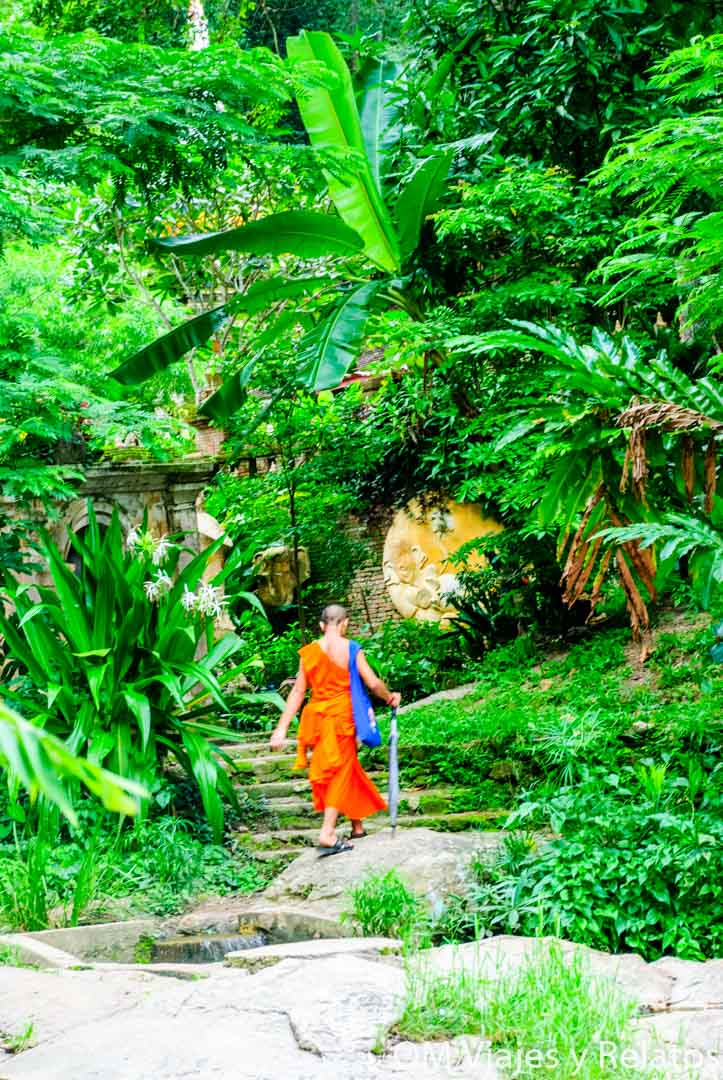 Monjes-Chiang-Mai