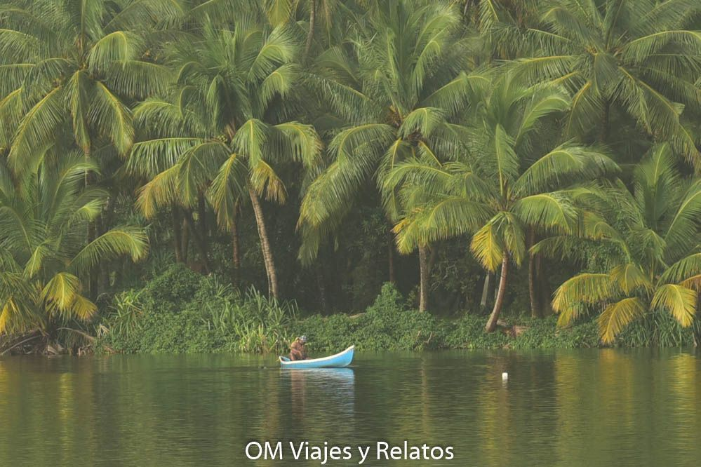 tour-backwaters