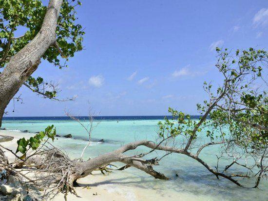 dónde-ir-a Maldivas: maafushi-playas.jpg