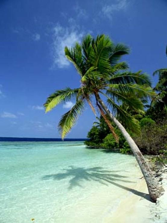 Embudu-resort-mejores-playas-maldivas