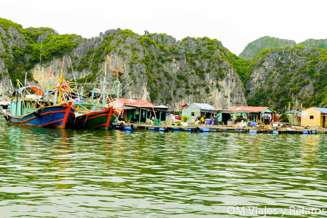 Floating villages Cat Ba