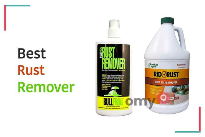 10 Best Rust Remover - omy9 Reviews