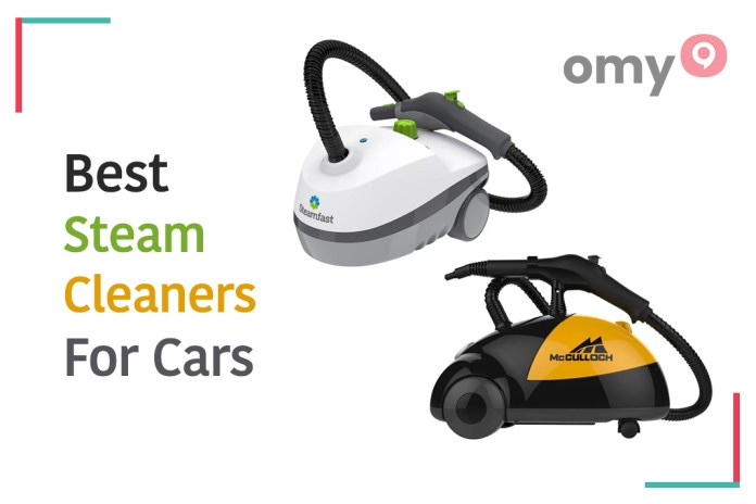 portable steam cleaner for cars