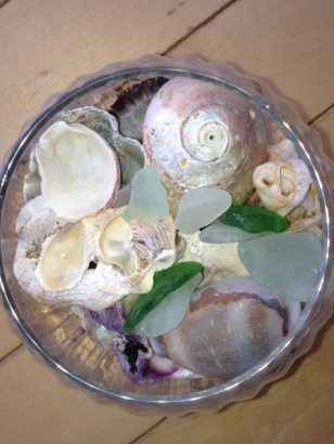 Shells and Beach Glass