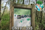 ONFF395_007