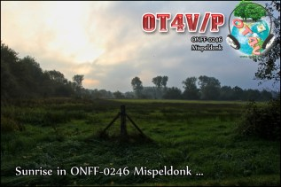 ONFF0246_005