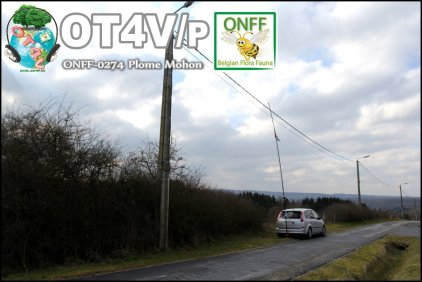 ONFF0274_003