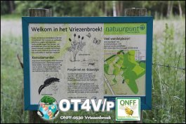 ONFF0530_003