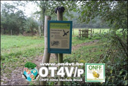 onff0204_009