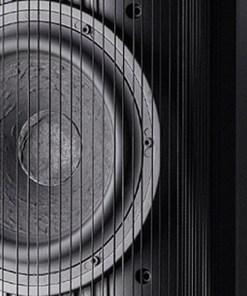Gryphon Pantheon loudspeaker