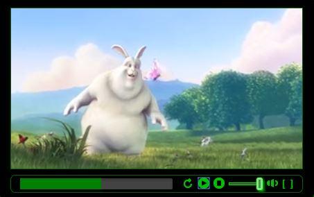 Custom HTML 5 Video Player