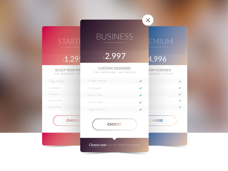 Pricing Tables by Matthias Goegel